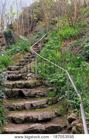 Ancient Stone Steps Leading Up Into Woodland