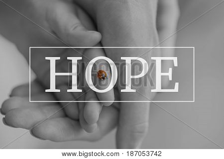 Hope text over conceptual image with selective black and red colours to the ladybug.