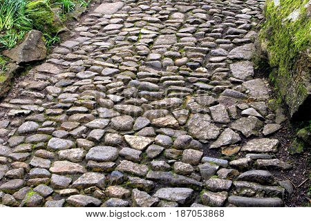 Ancient Stone Cobbled Path Leading Through Green Vegetation