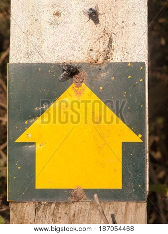 A Yellow Arrow Head Sign Pointing Up On Wooden Post Graphic