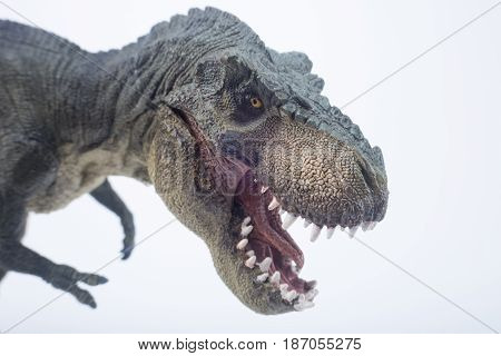 Macro Head Shot Of Green Dinosaur Tyrannosaurus Rex With Open Mouth In Attack Position - White Backg