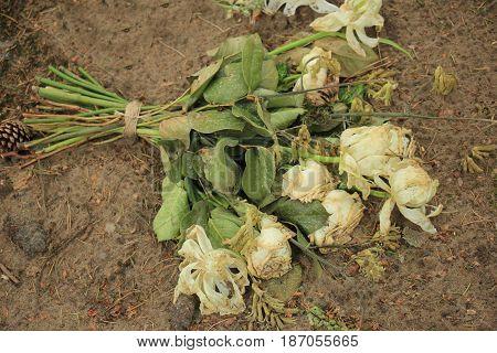 Various white sympathy bouquets on a grave