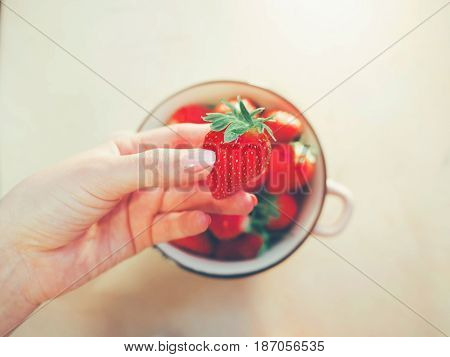 strawberry bowl in hands of woman wearing gray warm sweater, selective focus. Clean eating, healthy, vegetarian, dieting food concept