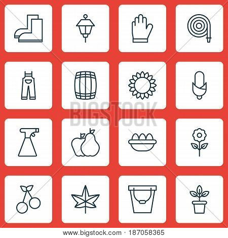Set Of 16 Gardening Icons. Includes Helianthus, Fruits, Pail And Other Symbols. Beautiful Design Elements.