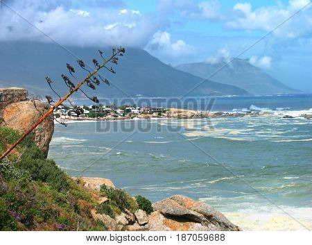 FROM CAPE TOWN, SOUTH AFRICA, SEASCAPE,WITH ROCKS JUTTING OUT IN THE FORE GROUND AND MOUNTAINS IN THE BACK GROUND 24