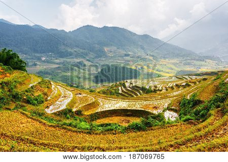 View Of Rice Terraces Filled With Water At Highlands In Vietnam
