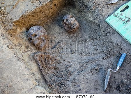 Archaeological excavation with skeletons skulls and spatulas to dig with