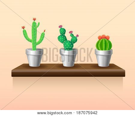 Colorful light houseplants set with green cactuses in flowerpots standing on table isolated vector illustration