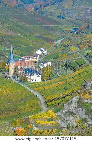 Vineyard Landscape in Ahr Valley near Bad Neuenahr-Ahrweiler,Rhineland-Palatinate,Germany