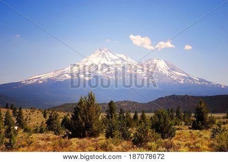 Mount Shasta in California with high desert junipers