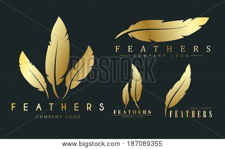 Set Of Gold Logos With Feathers For Writers Or Publishers.