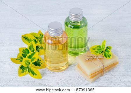 two bottles of natural herbal hair shampoo and handmade organic hair soap bar with plants, green and yellow