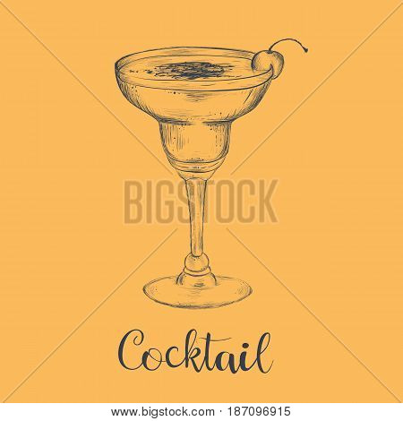 Cocktail sketch cherry. Sketch cocktail vector art