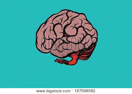 the human brain vector illustration. Comic book cartoon pop art retro color vector illustration hand drawn