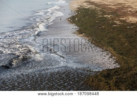 Tide on coast of Black Sea at summer day