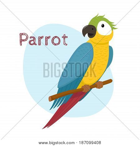 Cute macaw, ara parrot sitting on tree branch, tropical, exotic bird, cartoon vector illustration isolated on white background. Cartoon style macaw parrot sitting on a branch