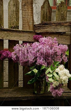 A bouquet of lilac branches in a glass jar on a bench