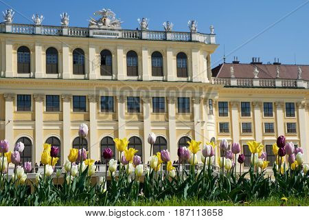 VIENNA, AUSTRIA - APR 30th, 2017: Schonbrunn Palace in Vienna. It's a former imperial 1441-room Rococo summer residence of Sissi Empress Elisabeth of Austria in modern Wien Schoenbrunn .