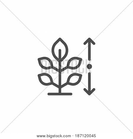 Plant height line icon isolated on white. Vector illustration