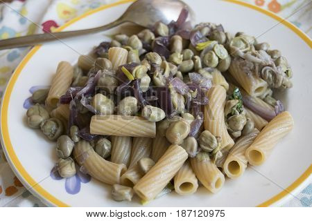 whole rigatoni with broad beans and tropea onions