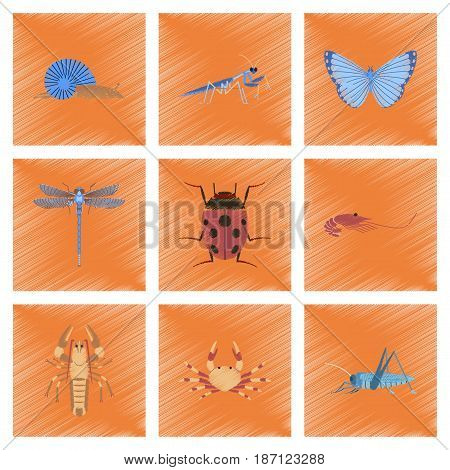 assembly flat shading style illustration of bug snail butterfly dragonfly ladybug