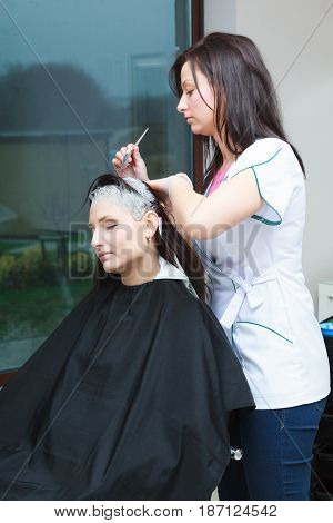 Woman Getting Hair Colored In Beauty Salon
