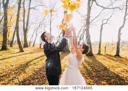 Happy newlyweds are throwing up the yellowed leaves in the park
