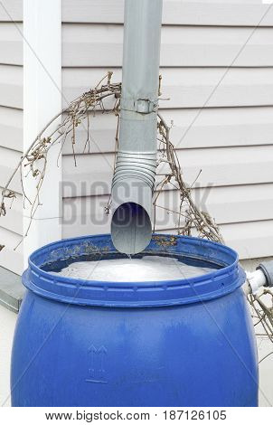 of a metal tube for draining the water flows rainwater in a plastic blue barrel in the country house