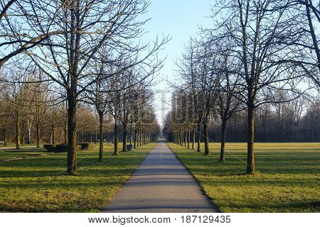 Milan (Lombardy italy): a path in the Parco Nord at winter