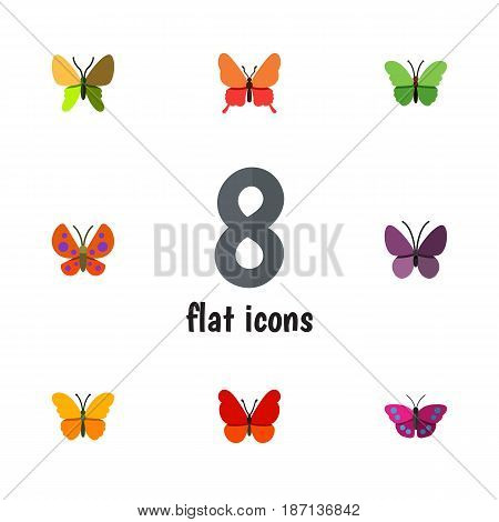 Flat Monarch Set Of Butterfly, Monarch, Archippus And Other Vector Objects. Also Includes Archippus, Monarch, Moth Elements.