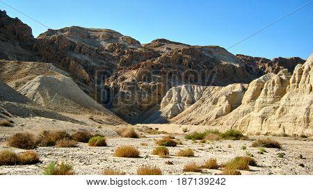 Canyon Ein Avdat In Negev Desert