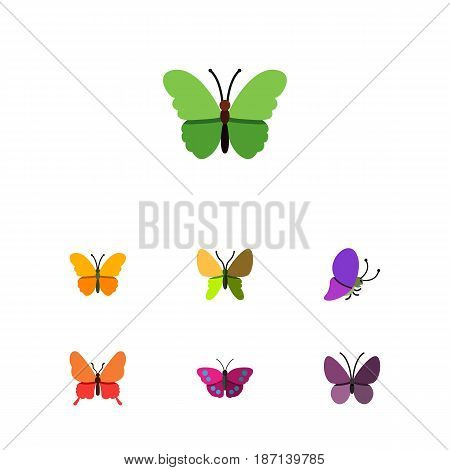 Flat Butterfly Set Of Danaus Plexippus, Archippus, Summer Insect And Other Vector Objects. Also Includes Summer, Archippus, Butterfly Elements.