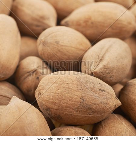 Close-up fragment of a surface coated with the pecan nuts as a backdrop composition with a shallow depth of field