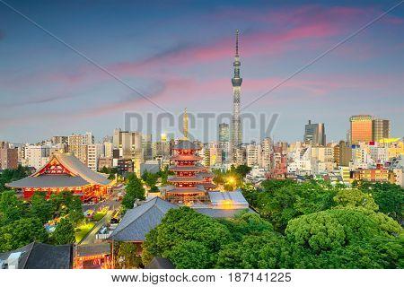 Tokyo, Japan skyline.