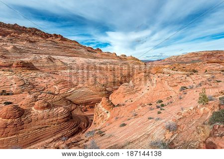 Mountain Around The Wave, Age Of Jurassic On The Earth, Arizona