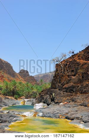 Yemen. Most beautiful canyon on Socotra island Wadi Dirhur. Mountain river between roks