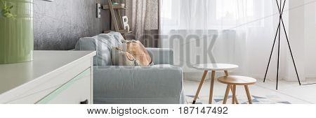 Elegant Calm Living Room