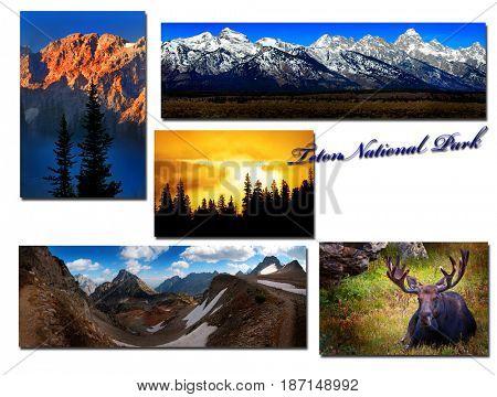 Teton National Park Images Montage