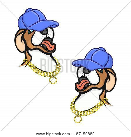 Puppy in a baseball cap a white background vector illustration