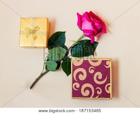 Gift boxes and pink rose on beige background