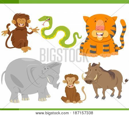 Animal Characters Collection