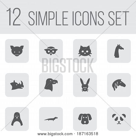 Set Of 12 Beast Icons Set.Collection Of Rhinoceros, Gecko, Aquila And Other Elements.