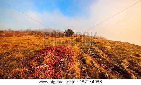 Foggy Autumn Evening In Val Rosandra