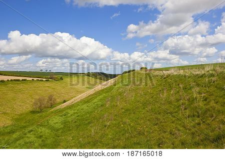 Yorkshire Wolds Valley Pasture