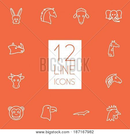 Set Of 12 Brute Outline Icons Set.Collection Of Eagle, Horse, Mammal And Other Elements.