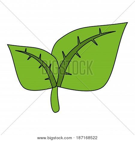 color image cartoon green leaves with ramifications vector illustration