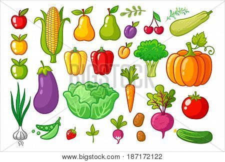 Vector set with vegetables. A collection of vegetarian food. Fruits and vegetables.