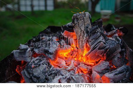 Smoldering ashes. Burning coal. BBQ barbecue. Night warm kebab photo