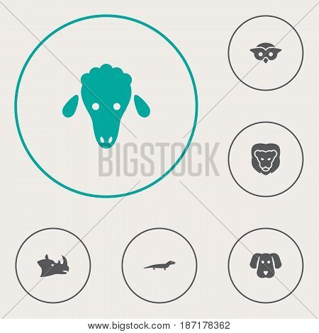 Set Of 6 Beast Icons Set.Collection Of Gecko, Hound, Rhinoceros And Other Elements.