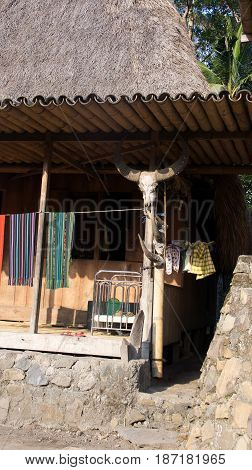 Cow skull house of Bena a traditional village with grass huts of the Ngada people in Flores near Bajawa Indonesia.